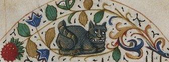 chat livre coeur