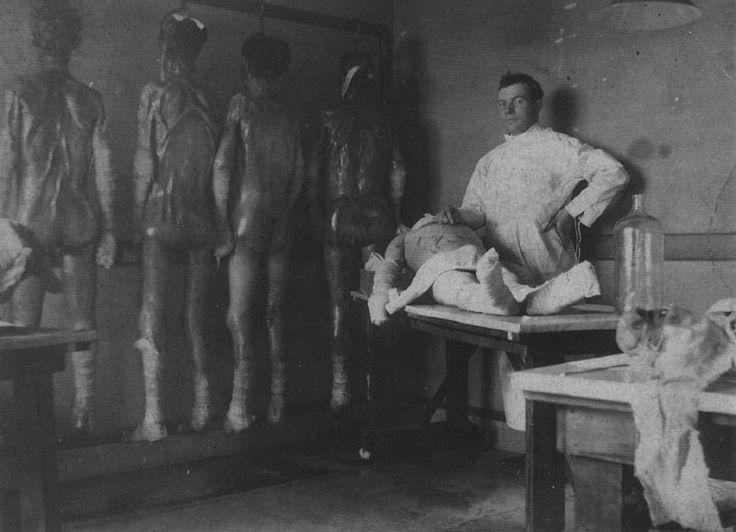 Les expériences de Mengele
